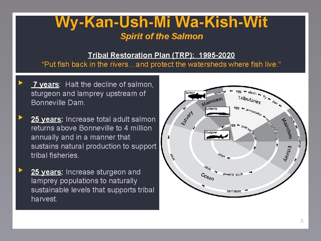 "Wy-Kan-Ush-Mi Wa-Kish-Wit Spirit of the Salmon Tribal Restoration Plan (TRP): 1995 -2020 ""Put fish"