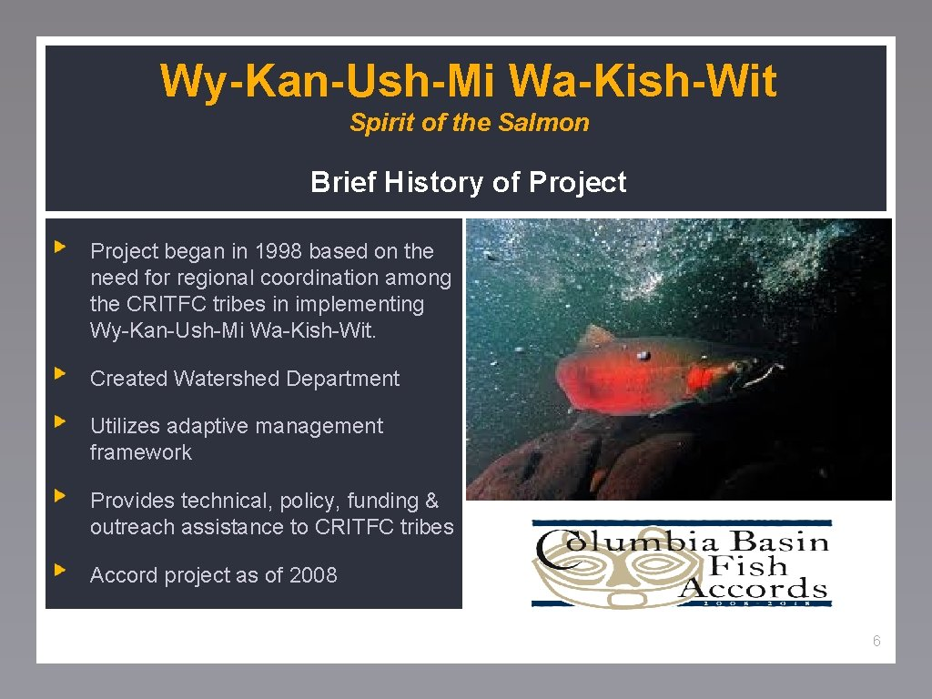 Wy-Kan-Ush-Mi Wa-Kish-Wit Spirit of the Salmon Brief History of Project began in 1998 based