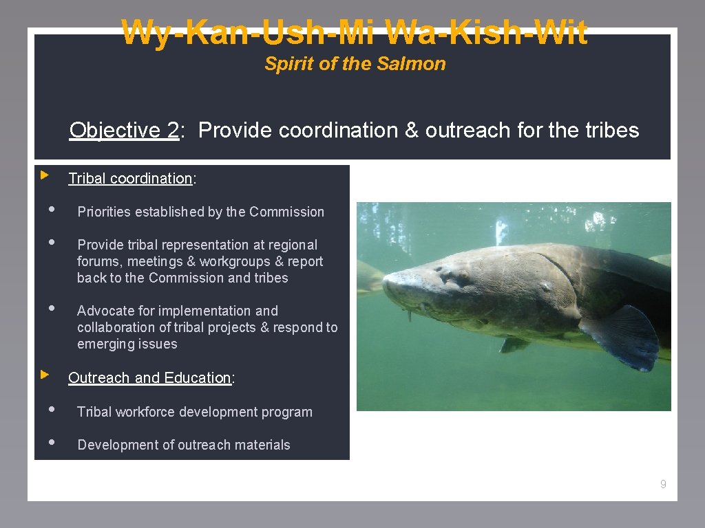 Wy-Kan-Ush-Mi Wa-Kish-Wit Spirit of the Salmon Objective 2: Provide coordination & outreach for the