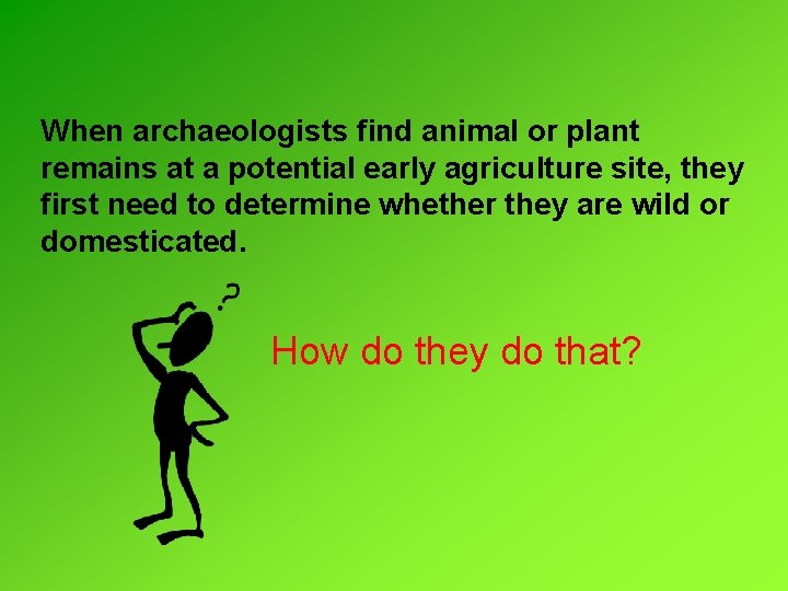 When archaeologists find animal or plant remains at a potential early agriculture site, they