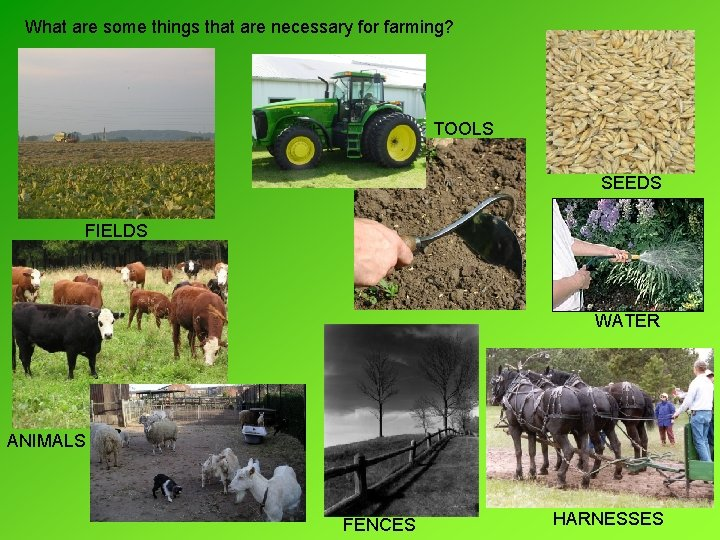 What are some things that are necessary for farming? TOOLS SEEDS FIELDS WATER ANIMALS