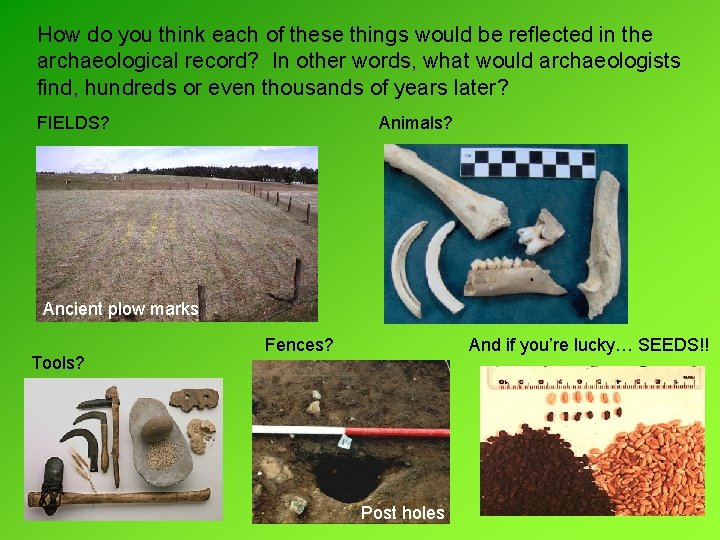 How do you think each of these things would be reflected in the archaeological