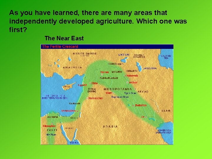 As you have learned, there are many areas that independently developed agriculture. Which one