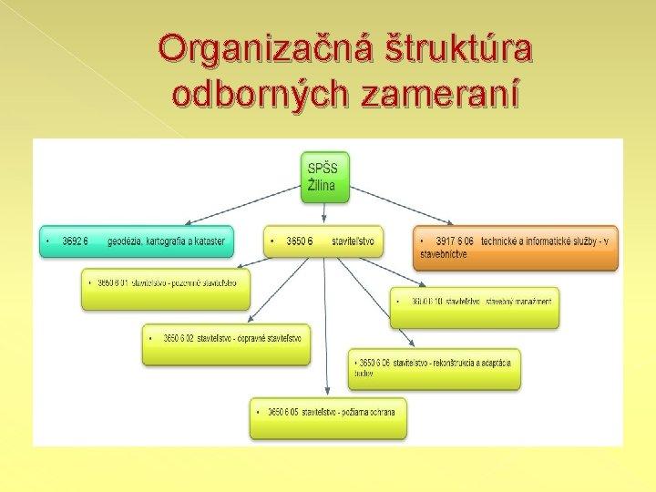 Organizačná štruktúra odborných zameraní