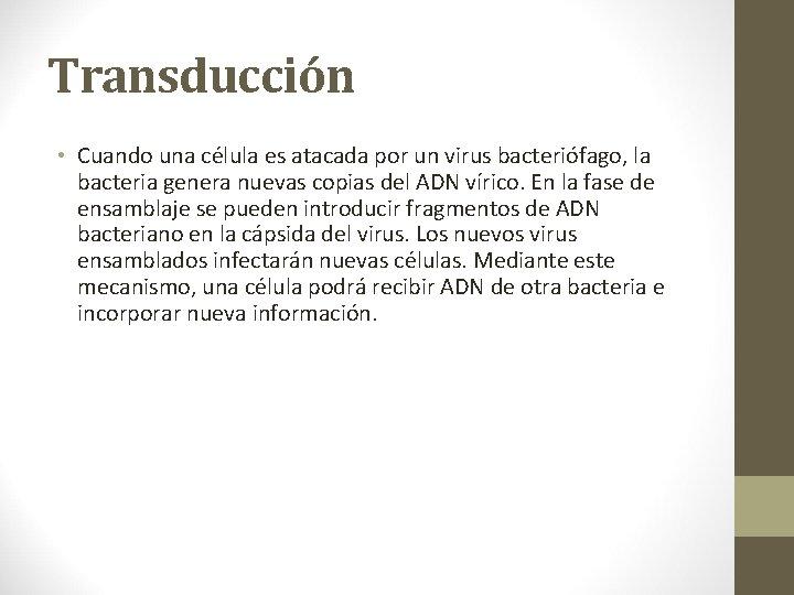 Transducción • Cuando una célula es atacada por un virus bacteriófago, la bacteria genera