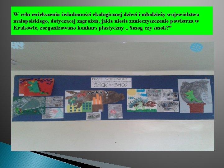 W celu zwiększenia świadomości ekologicznej dzieci i młodzieży województwa małopolskiego, dotyczącej zagrożeń, jakie niesie
