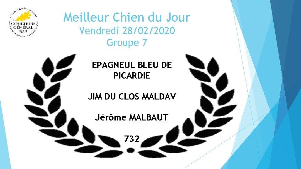 Meilleur Chien du Jour Vendredi 28/02/2020 Groupe 7 EPAGNEUL BLEU DE PICARDIE JIM DU