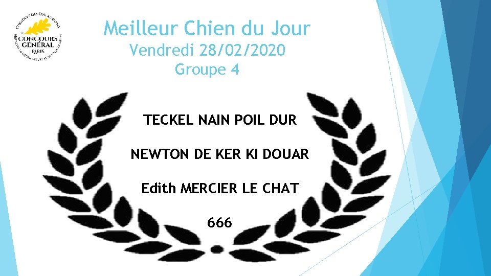 Meilleur Chien du Jour Vendredi 28/02/2020 Groupe 4 TECKEL NAIN POIL DUR NEWTON DE
