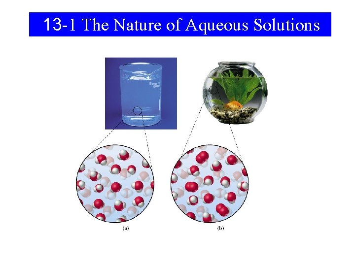 13 -1 The Nature of Aqueous Solutions