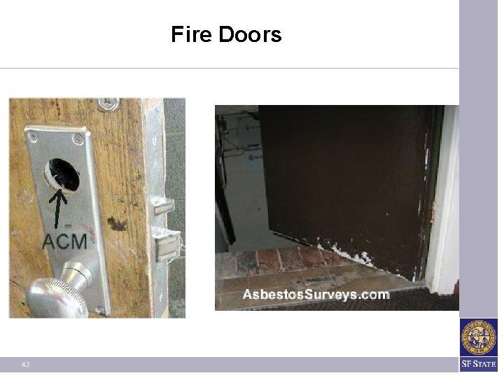 Fire Doors 43