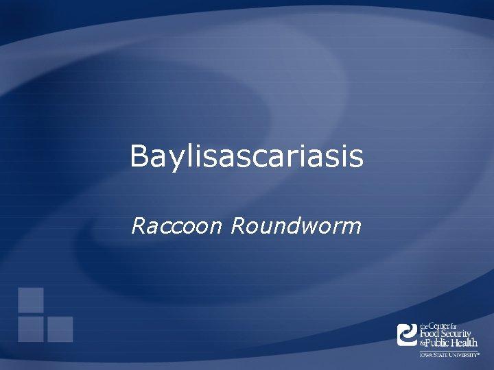 Baylisascariasis Raccoon Roundworm