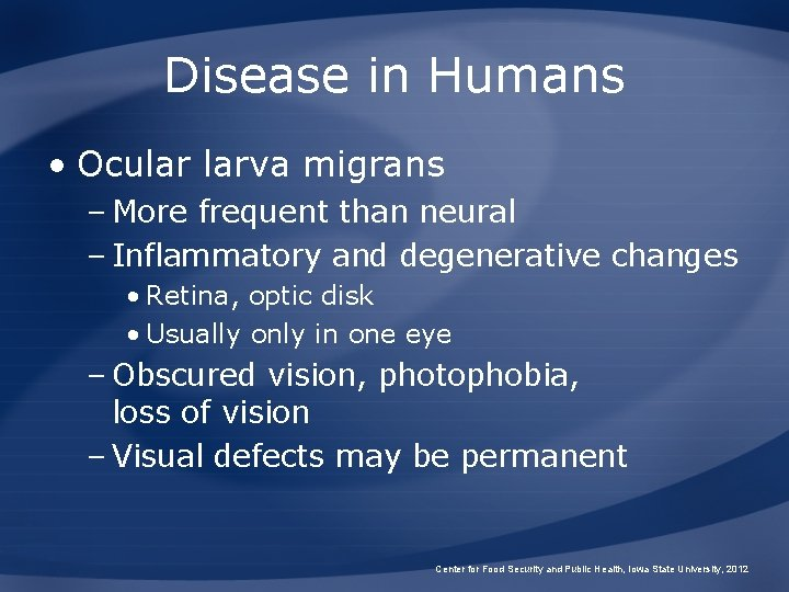 Disease in Humans • Ocular larva migrans – More frequent than neural – Inflammatory