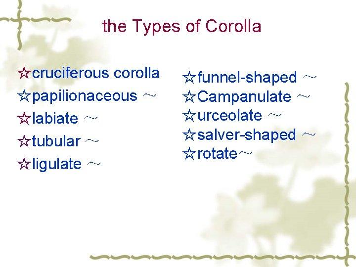 the Types of Corolla ☆cruciferous corolla ☆papilionaceous ~ ☆labiate ~ ☆tubular ~ ☆ligulate ~