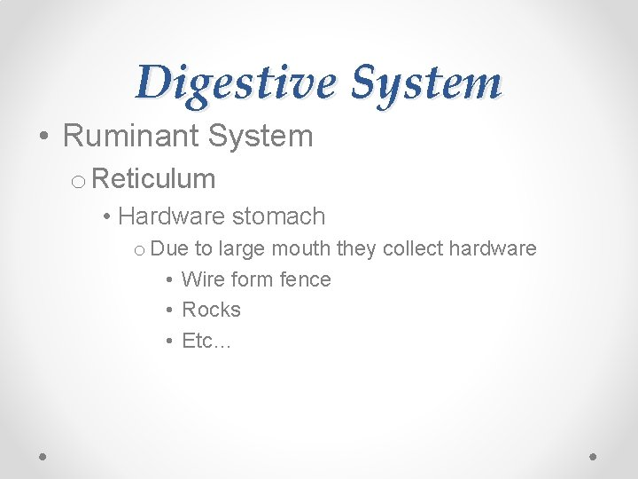 Digestive System • Ruminant System o Reticulum • Hardware stomach o Due to large