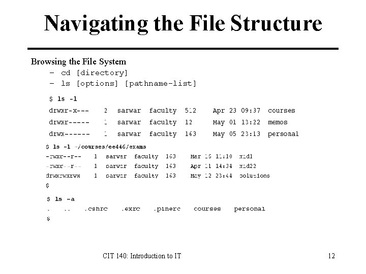 Navigating the File Structure Browsing the File System – cd [directory] – ls [options]