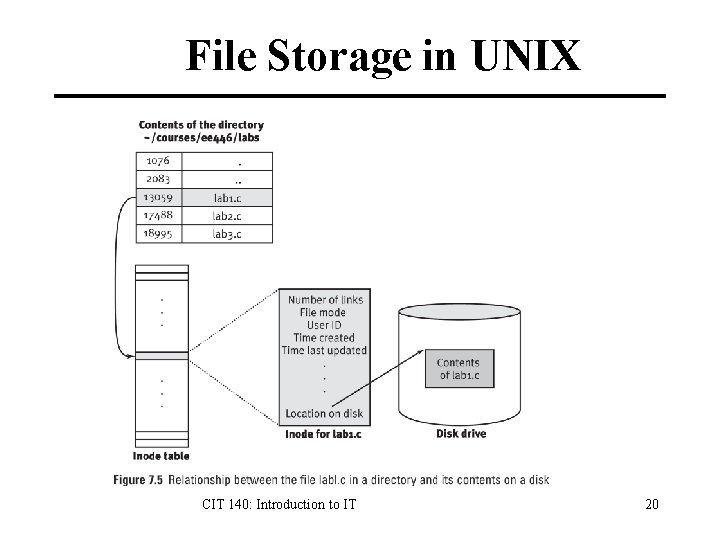 File Storage in UNIX CIT 140: Introduction to IT 20
