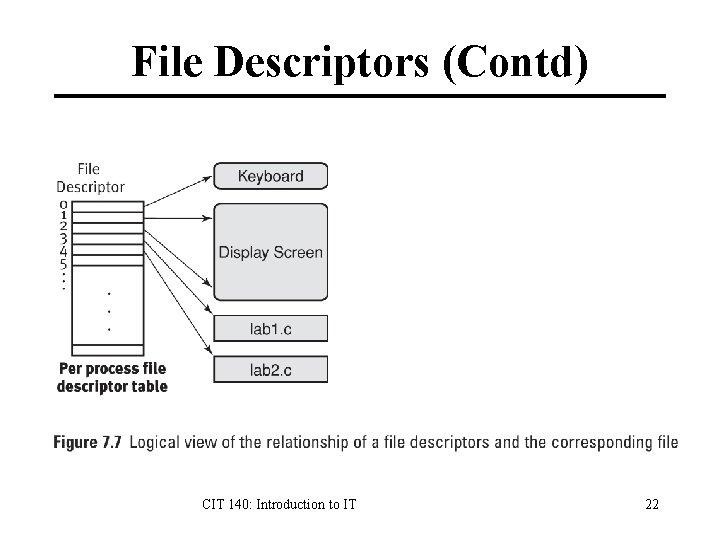 File Descriptors (Contd) CIT 140: Introduction to IT 22