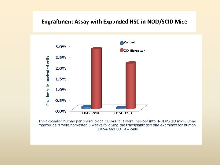 Engraftment Assay with Expanded HSC in NOD/SCID Mice Control Positive % in nucleated cells