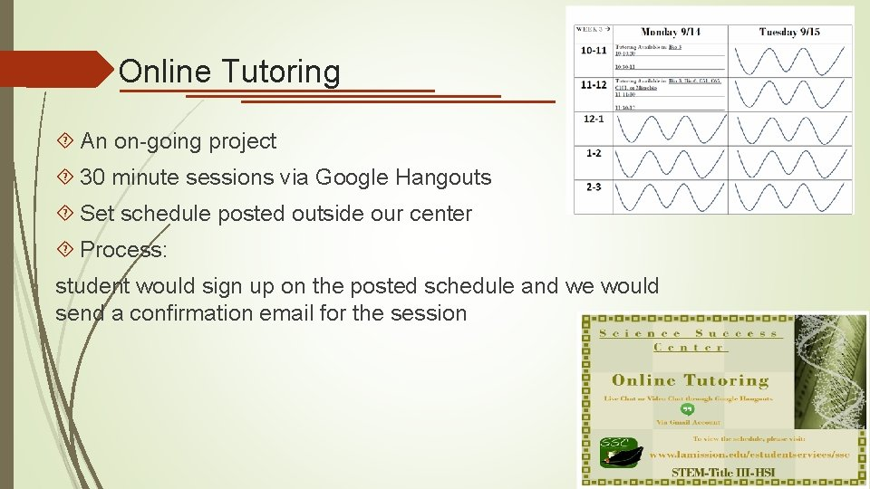Online Tutoring An on-going project 30 minute sessions via Google Hangouts Set schedule posted