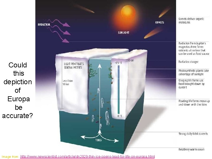 Could this depiction of Europa be accurate? Image from http: //www. newscientist. com/article/dn 2929