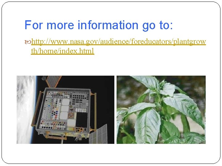 For more information go to: http: //www. nasa. gov/audience/foreducators/plantgrow th/home/index. html