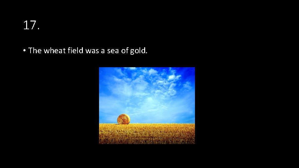 17. • The wheat field was a sea of gold.