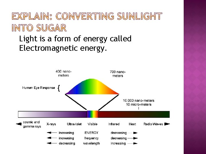 Light is a form of energy called Electromagnetic energy.