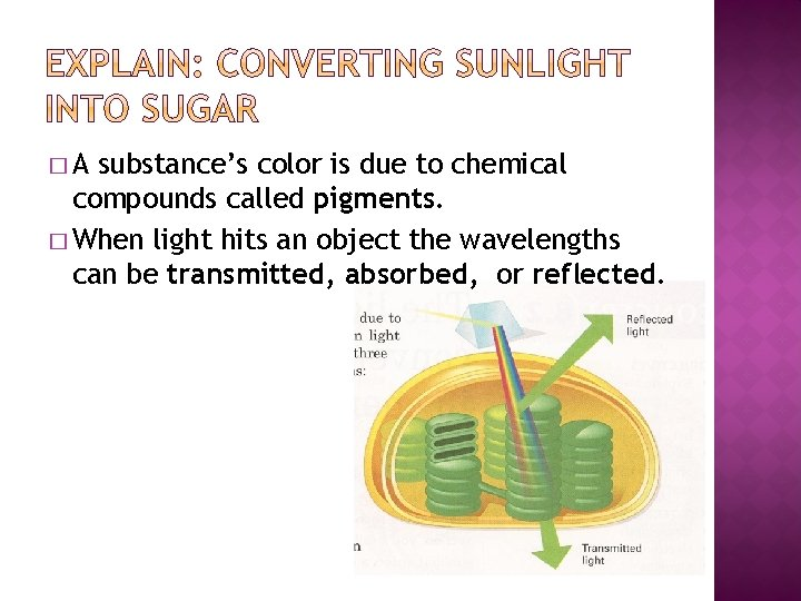 �A substance's color is due to chemical compounds called pigments. � When light hits