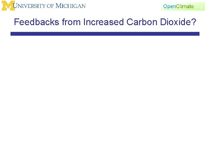 Feedbacks from Increased Carbon Dioxide?