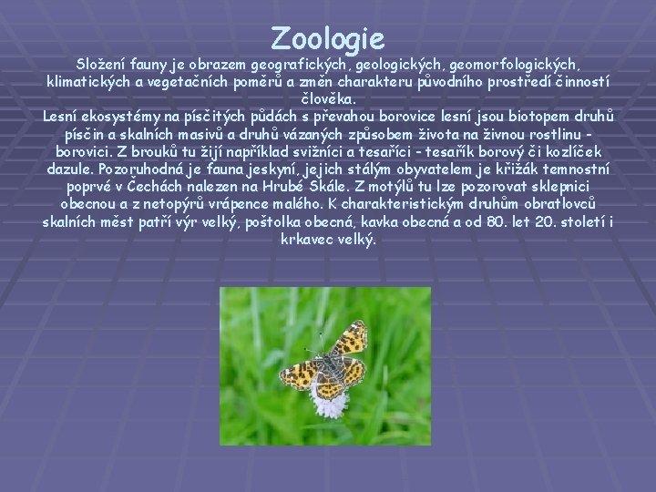 Zoologie Složení fauny je obrazem geografických, geologických, geomorfologických, klimatických a vegetačních poměrů a změn