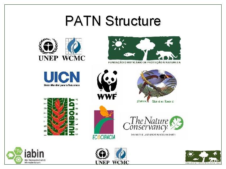 PATN Structure