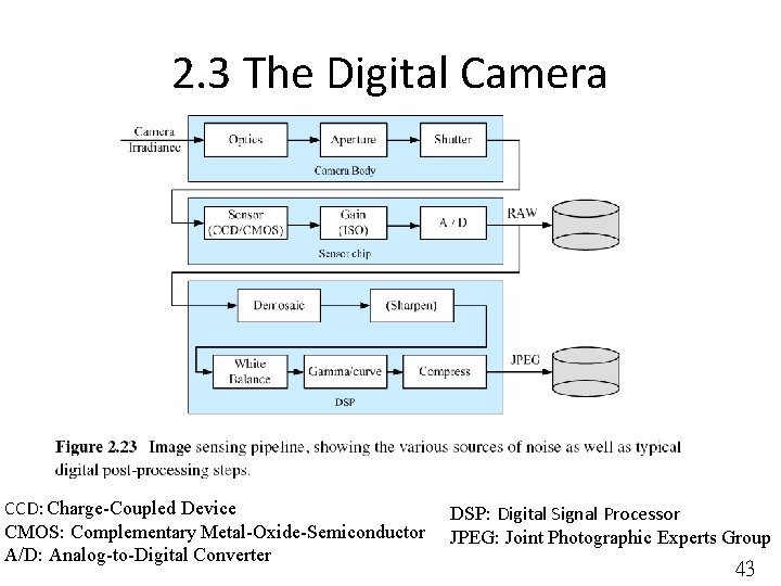 2. 3 The Digital Camera CCD: Charge-Coupled Device CMOS: Complementary Metal-Oxide-Semiconductor A/D: Analog-to-Digital Converter