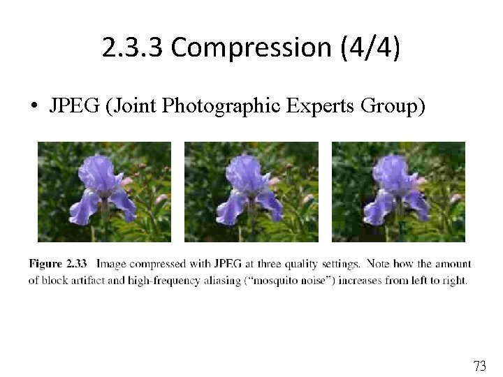 2. 3. 3 Compression (4/4) • JPEG (Joint Photographic Experts Group) 73