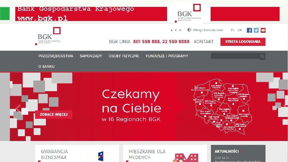 Bank Gospodarstwa Krajowego www. bgk. pl