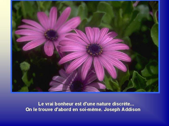 Le vrai bonheur est d'une nature discrète. . . On le trouve d'abord en
