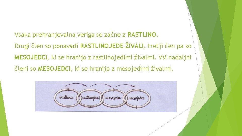 Vsaka prehranjevalna veriga se začne z RASTLINO. Drugi člen so ponavadi RASTLINOJEDE ŽIVALI, tretji
