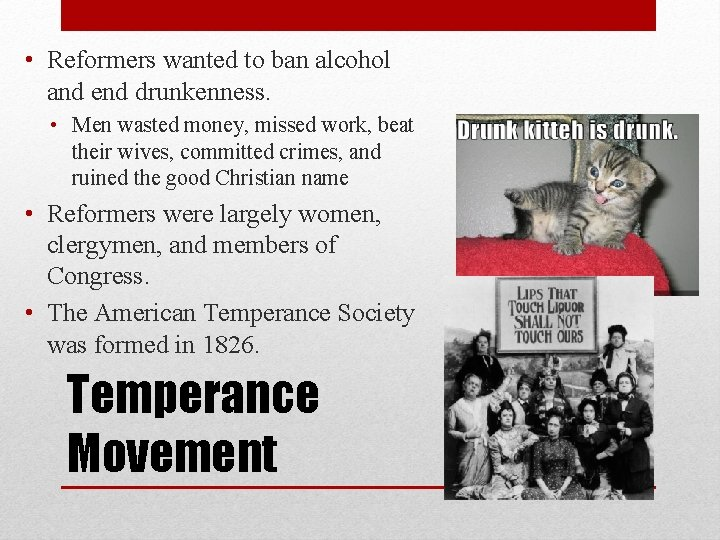 • Reformers wanted to ban alcohol and end drunkenness. • Men wasted money,