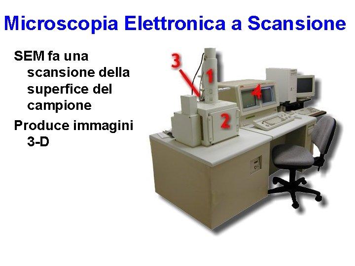 Microscopia Elettronica a Scansione SEM fa una scansione della superfice del campione Produce immagini