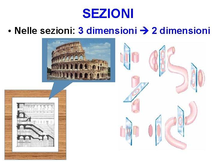 SEZIONI • Nelle sezioni: 3 dimensioni 2 dimensioni