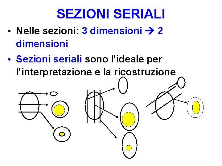 SEZIONI SERIALI • Nelle sezioni: 3 dimensioni 2 dimensioni • Sezioni seriali sono l'ideale