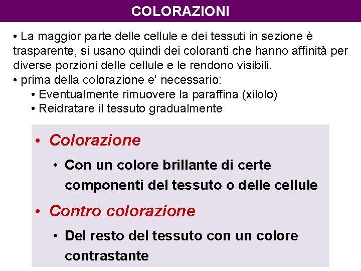 COLORAZIONI • La maggior parte delle cellule e dei tessuti in sezione è trasparente,