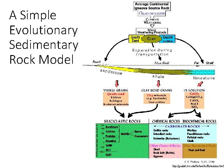 A Simple Evolutionary Sedimentary Rock Model