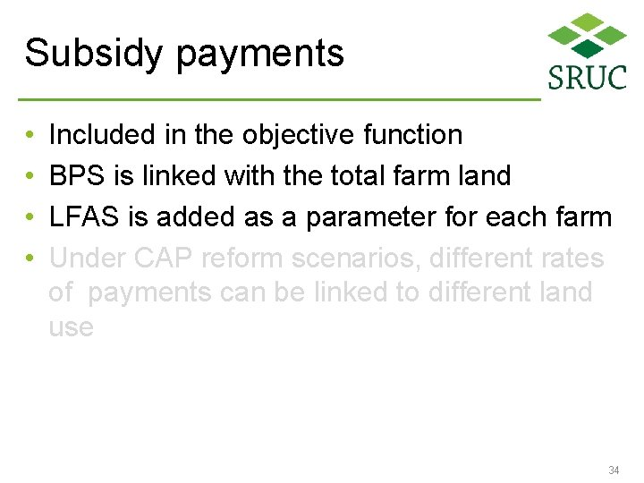 Subsidy payments • • Included in the objective function BPS is linked with the