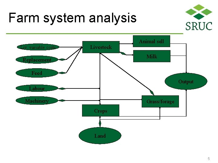 Farm system analysis Liv. variable costs Livestock Animal sell Milk Replacement Feed Output Labour