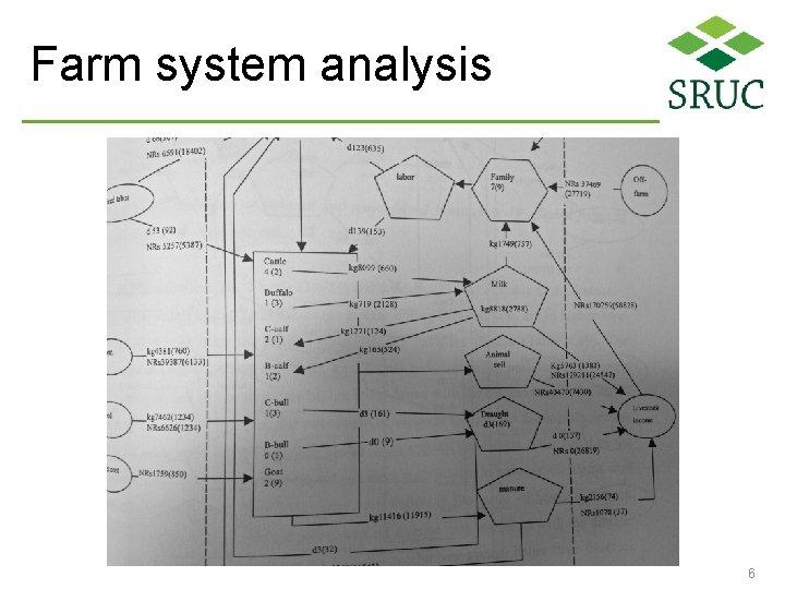 Farm system analysis 6