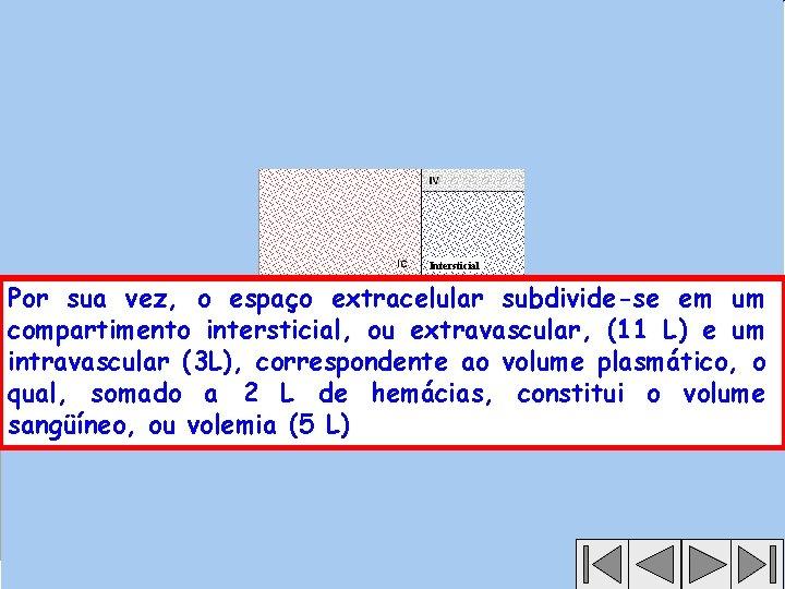 Intersticial Por sua vez, o espaço extracelular subdivide-se em um compartimento intersticial, ou extravascular,
