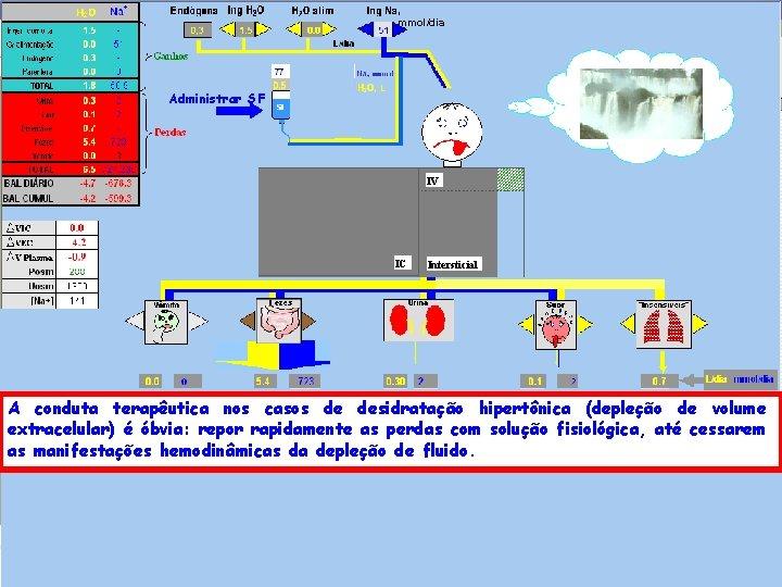 , mmol/dia Administrar SF IV IC Intersticial A conduta terapêutica nos casos de desidratação