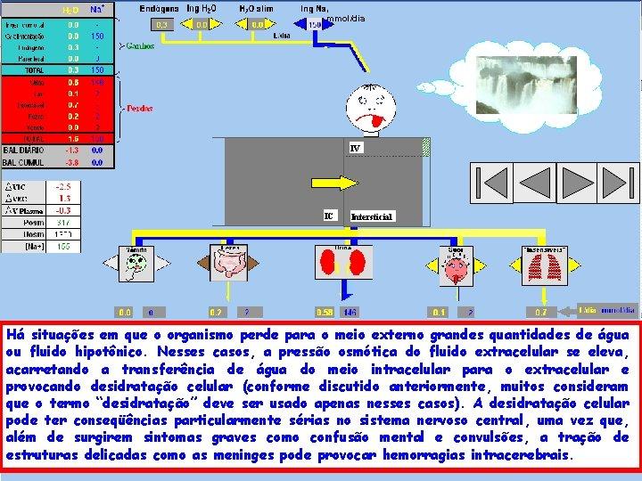 , mmol/dia IV IC Intersticial Há situações em que o organismo perde para o