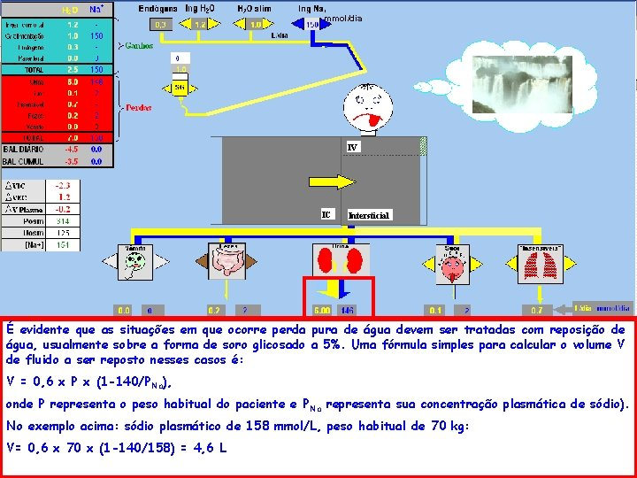 , mmol/dia IV IC Intersticial É evidente que as situações em que ocorre perda