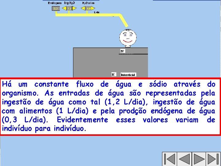 IV IC Intersticial Há um constante fluxo de água e sódio através do organismo.